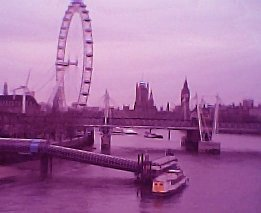 PurpleLondon004.jpg