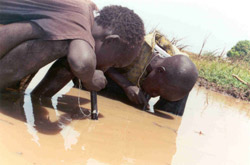 Sudanese boys using pipe filters to avoid contracting dracunculiasis.