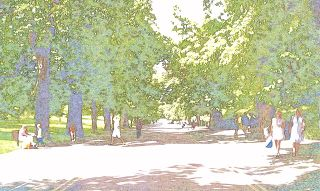 Greenwich park drawing1.jpg
