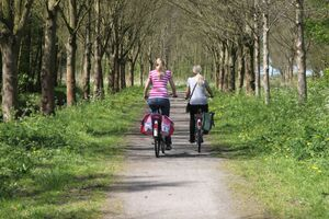 Cycling mother and daughter in a forest.JPG