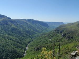 Linville Gorge 3.JPG